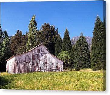 A Bit Of Country Canvas Print by Glenn McCarthy Art and Photography