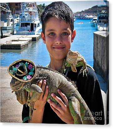 A Boy And His Iguanas Canvas Print by Amy Fearn
