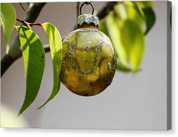 A Christmas Ornament Any Tree Canvas Print by Carolina Liechtenstein