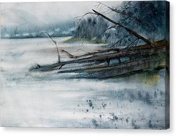A Cold And Foggy View Canvas Print by Jani Freimann