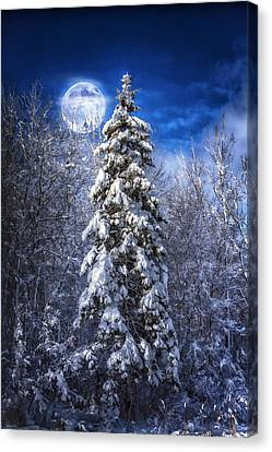 A Cold Night In Northern Maine Canvas Print by Gary Smith