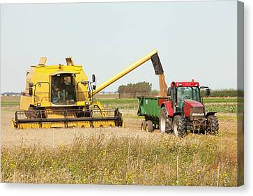 A Combine Harvester Canvas Print by Ashley Cooper