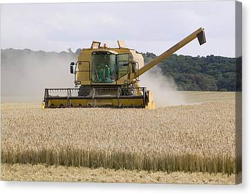 A Combine Harvester In Weybourne Canvas Print by Ashley Cooper