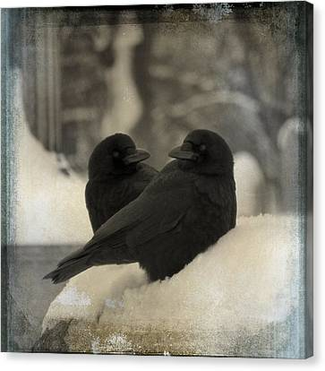 A Crow Couple Canvas Print by Gothicolors Donna Snyder