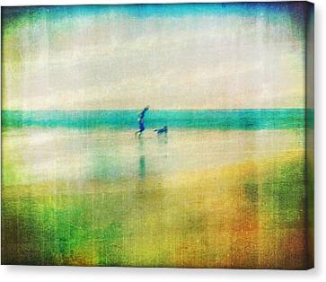 A Day By The Sea Canvas Print by Suzy Norris