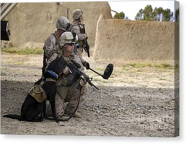 A Dog Handler Provides Security Canvas Print by Stocktrek Images
