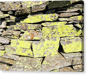 A Dry Stone Wall On Lingmoor Canvas Print by Ashley Cooper