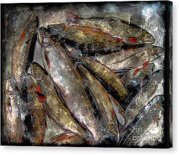 A Fine Catch Of Trout - Steel Engraving Canvas Print by Barbara Griffin