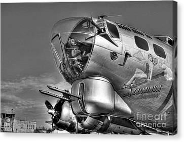 A Flying Fortress Bw Canvas Print by Mel Steinhauer