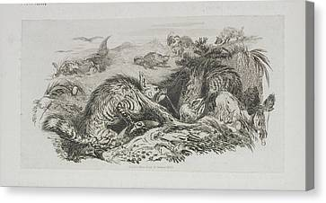 A Fox Canvas Print by British Library