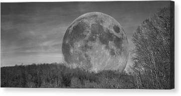 A Friend At Night Canvas Print by Betsy Knapp
