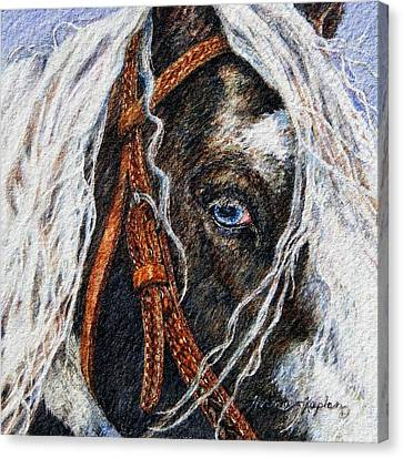 A Gypsy's Blue Eye Canvas Print by Denise Horne-Kaplan