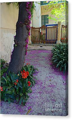 A Hint Of Spring Canvas Print by Rene Triay Photography