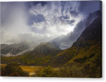 A Light Caress Canvas Print by Aaron S Bedell