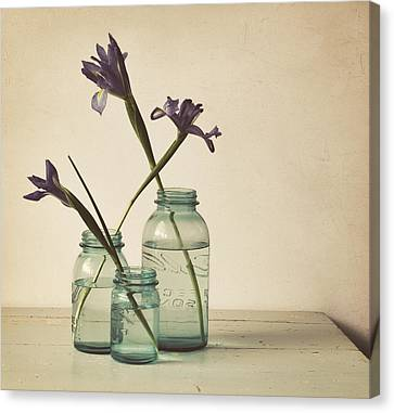 A Little Bit Country Canvas Print by Amy Weiss