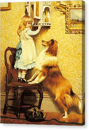 A Little Girl And Her Sheltie Canvas Print by Charles Burton Barber