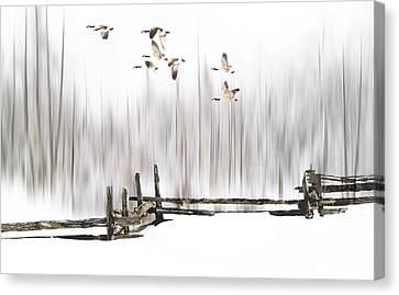 A Little Winter Magic Canvas Print by Andrea Kollo