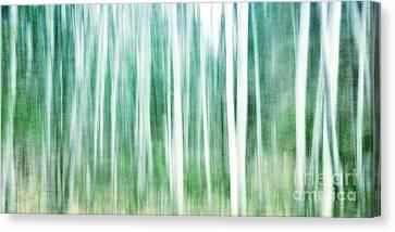 A Matter Of Blues Canvas Print by Priska Wettstein