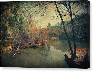 A New Day Another Chance Canvas Print by Laurie Search