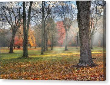 A November Morning Canvas Print by Bill Wakeley