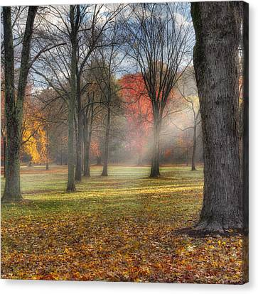 A November Morning Square Canvas Print by Bill Wakeley