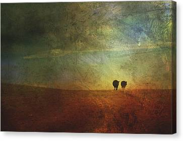 A Painterly Image Of Two Cows Walking Canvas Print by Roberta Murray
