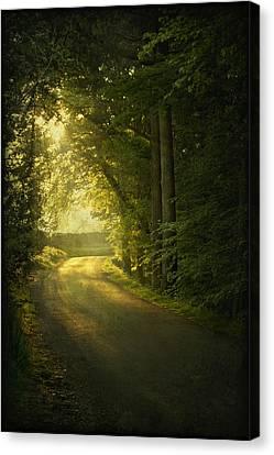 A Path To The Light Canvas Print by Evelina Kremsdorf