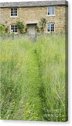 A Pathway Home Canvas Print by Tim Gainey