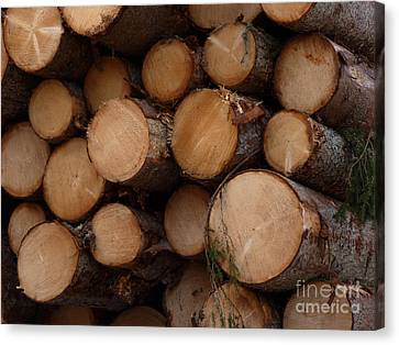 A Pile Of Logs  Canvas Print by Kerstin Ivarsson
