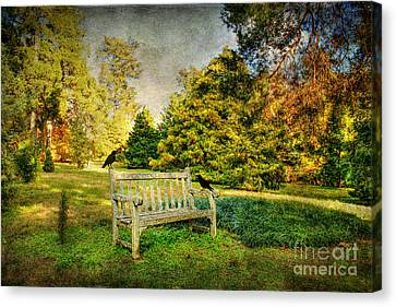 A Resting Place Canvas Print by Darren Fisher