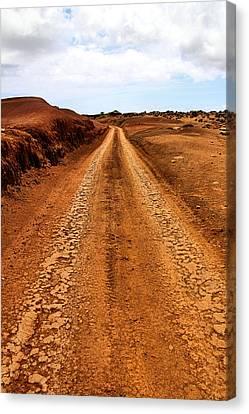 A Road Less Traveled Canvas Print by DJ Florek