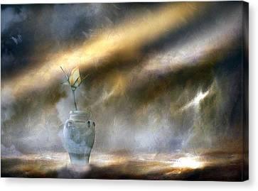A Rose On The Plain Canvas Print by Georgiana Romanovna