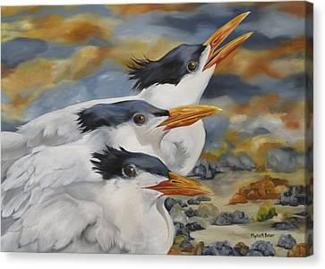 A Royal Trio Canvas Print by Phyllis Beiser