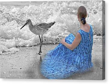 A Sandpiper's Dream Canvas Print by Betsy C Knapp