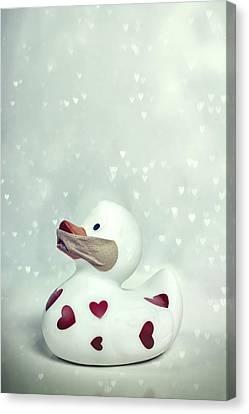 A Shut Mouth Catches No Flies Canvas Print by Joana Kruse