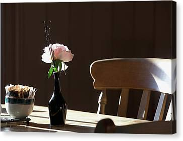 A Single Rose Sits In A Small Vase Canvas Print by John Short
