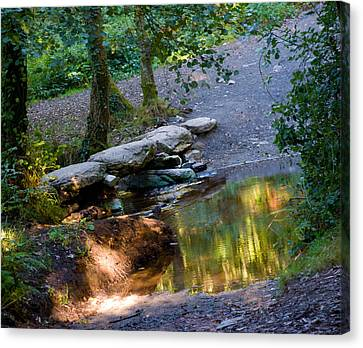 A Small River In Galicia Spain Canvas Print by Dave Byrne