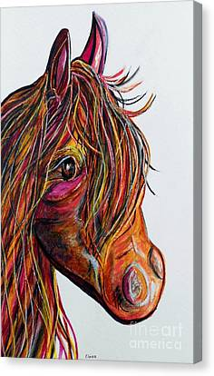 A Stick Horse Named Amber Canvas Print by Eloise Schneider