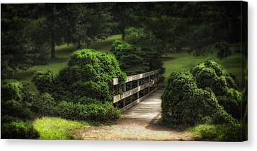 A Stroll Through The Park Canvas Print by Tom Mc Nemar