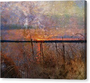 A Sunrise To Remember Canvas Print by J Larry Walker