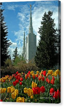 A Temple To Our God Canvas Print by Nick  Boren