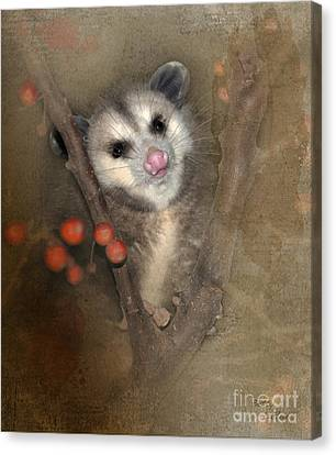 A Thief In The Night Canvas Print by Betty LaRue