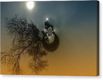 A Tree In The Sky Canvas Print by Jeff Swan