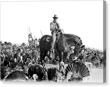 A Turkey Rancher Canvas Print by Underwood Archives