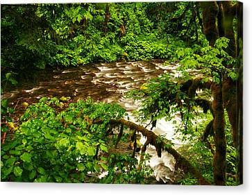 A View Of Eagle Creek Canvas Print by Jeff Swan