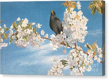 A Voice Of Joy And Gladness Canvas Print by John Samuel Raven