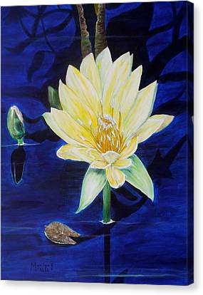 A Waterlily Canvas Print by Marilyn  McNish