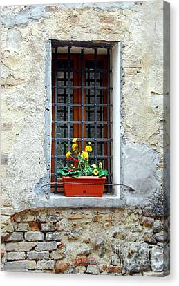 A Window In Tuscany Canvas Print by Mel Steinhauer