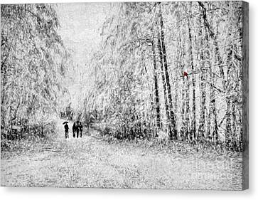 A Winter Stroll Canvas Print by Darren Fisher