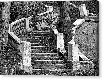 Abandoned Staircase Canvas Print by Olivier Le Queinec